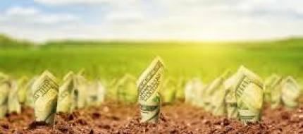 Cara Investasi Tanah yang Harus Anda Ketahui  Agar Tak Salah Pilih